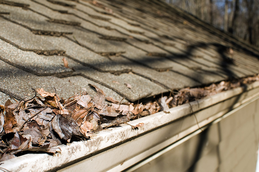 5 Factors that Can Deteriorate Roofs Faster