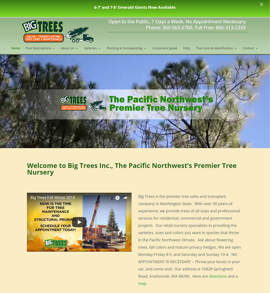Real Web Marketing Designs New Web Site for Big Trees Inc. in Seattle